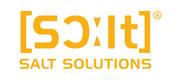 SALT Solutions AG Logo