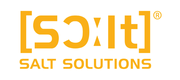 SALT Solutions AG Logo